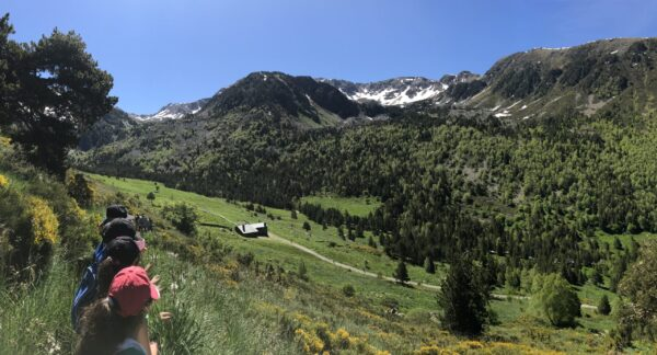 Guías especialistas en Vías Ferratas en Andorra. Montaña, la naturaleza y actividades al aire libre en Andorra. Las vías ferratas en Andorra está equipadas para tener la máxima seguridad. Esta actividad de verano entre el senderismo de montaña (trekking) y la escalada básica. Las Vías Ferratas son un recorrido de montaña con tramos sobre paredes o roca equipados con peldaños, grapas, cable, rampas, clavijas e incluso puentes colgantes. Estos elementos aseguran vuestro recorrido en la montaña de Canillo y posibilitan que avancéis y superéis los obstáculos del camino. Vías ferratas fáciles en Andorra. Para probar por primera vez las Vías Ferratas en Canillo Andorra, o si vas a hacerlo en familia, te recomendamos que elijas una Vía Ferrata fácil. Esto te permitirá descubrir nuevas sensaciones en Andorra sin sobrepasar tus posibilidades y disfrutar de la experiencia y de una magnífica aventura en las Montañas de Andorra gracias a Esports Elit Canillo posiblemente los mejores Guías de Montaña en Andorra